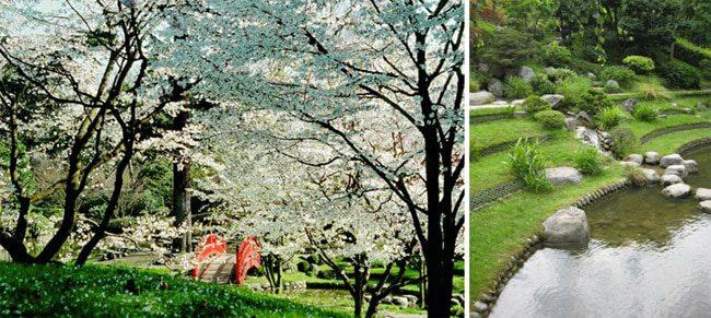 Albert Kahn's Gardens