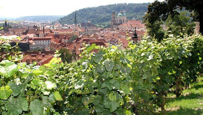 Things to do in Prague in September