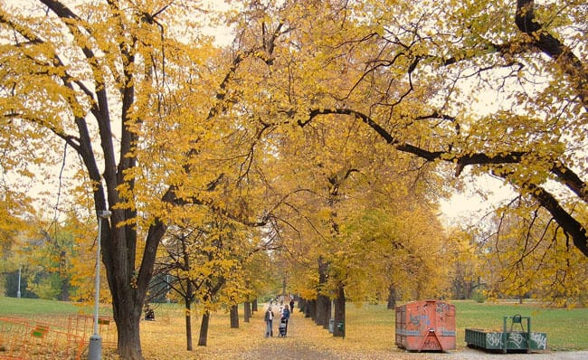 Things to do in Prague in October