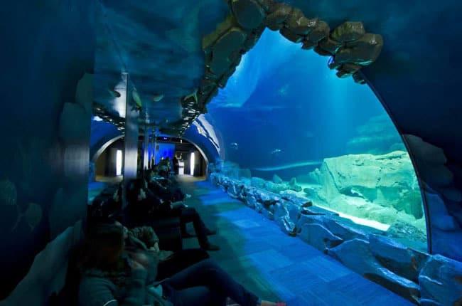 paris_aquarium1