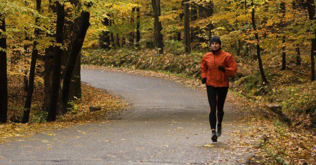forest-jog
