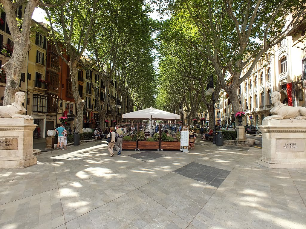 Top 5 best streets to see in Barcelona - Discover Walks