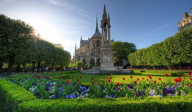 Enjoy the Notre Dame Cathedral