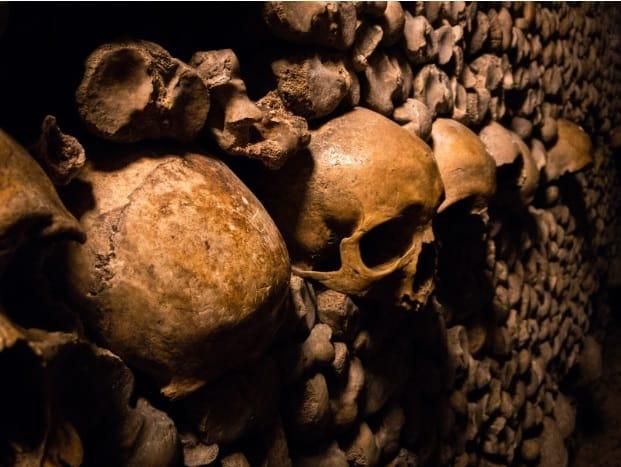 Skulls Catacombs