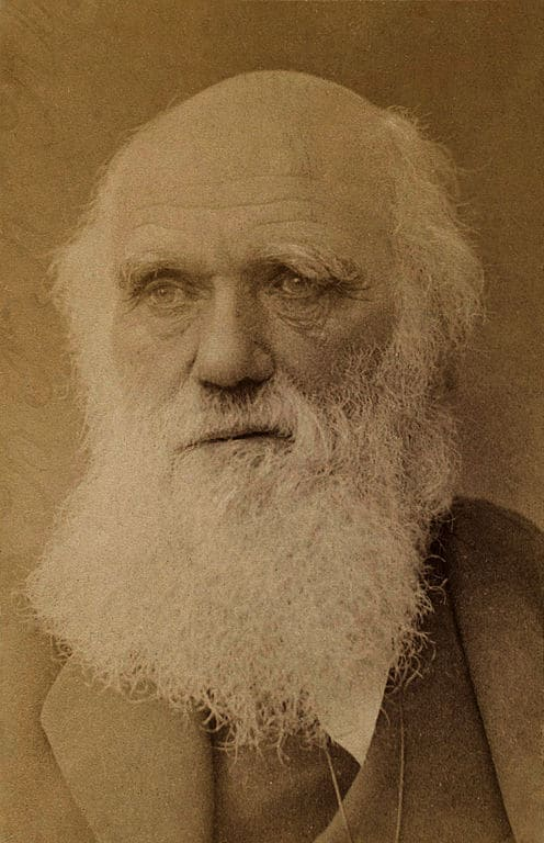 Charles Darwin by Barraud