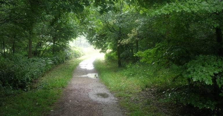 jardin porte de vincennes Discover Walks