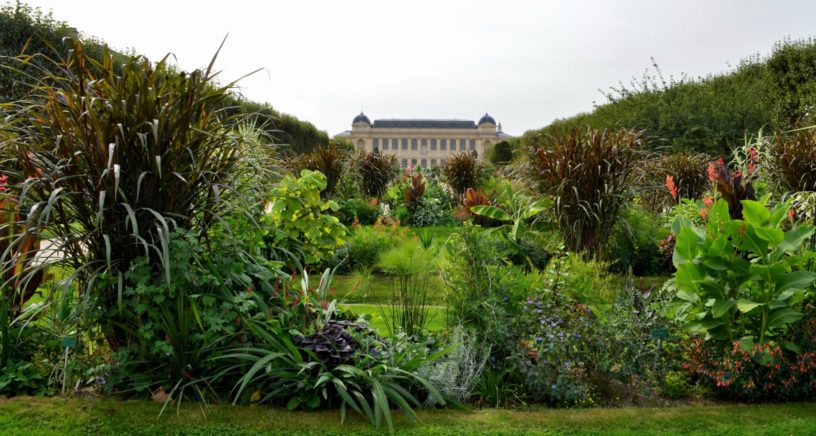 Why You Need to Visit Paris\' Botanical Garden