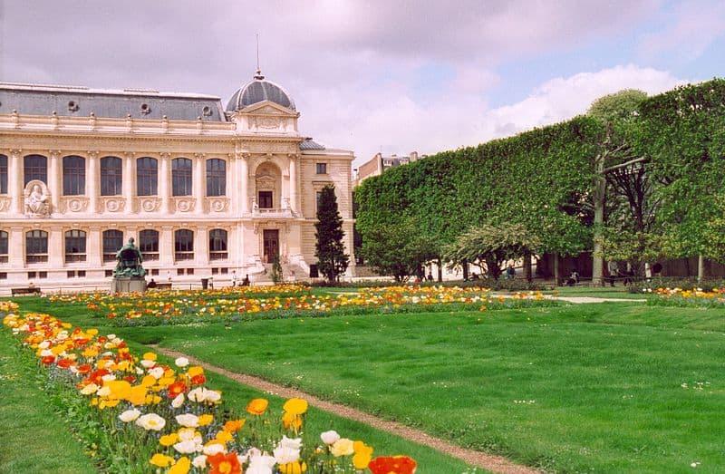5 Reasons to Visit le Jardin des Plantes in Paris - Discover Walks Blog