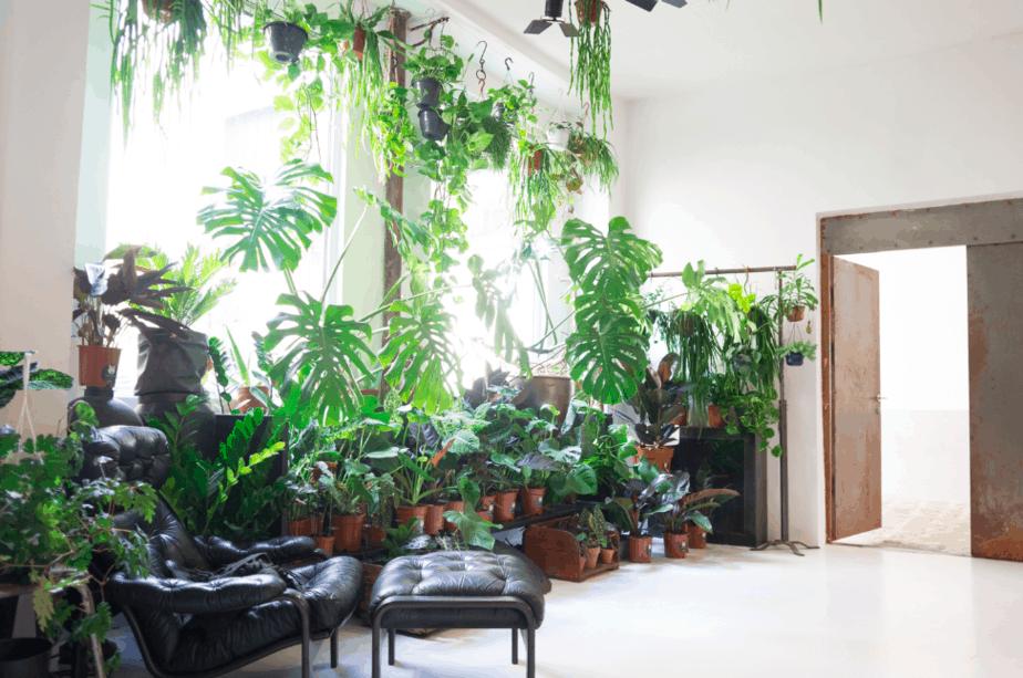 top 5 hot yoga studios in paris discover walks blog. Black Bedroom Furniture Sets. Home Design Ideas