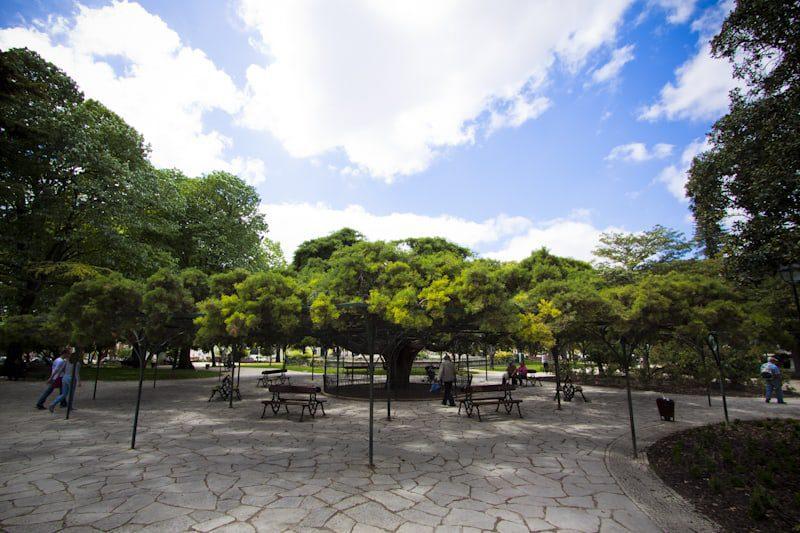Jardim do Príncipe Real