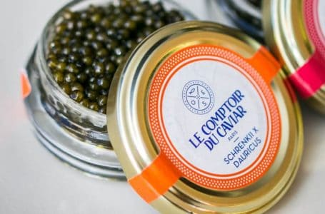 Caviar and Champagne tour in Paris